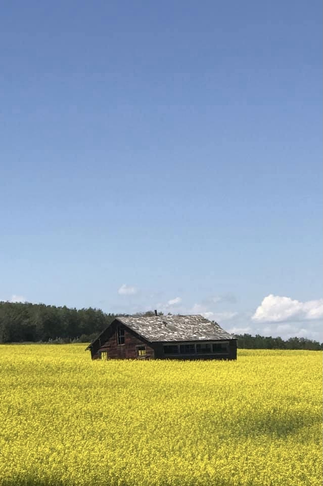 DeWinton Countryside